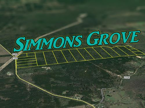 38.103 Ac Simmons Grove Tr 12 : Dayton : Liberty County : Texas