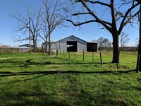 92+/- Ac Cattle Farm : Wadley : Clay County : Alabama
