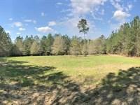 Sacco Tract : Citronelle : Washington County : Alabama