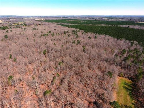 Mature Timber Tract - Franklin/Law : Russellville : Franklin County : Alabama