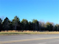 24 Acres in Fort Lawn, Chester Cou : Fort Lawn : Chester County : South Carolina