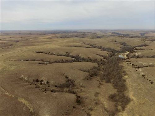 Just Listed, 545 Acres of Hunti : Natoma : Rooks County : Kansas