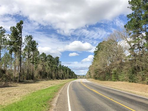 11.57 Acres Kittrell Acres Tract 3 : Trinity : Walker County : Texas