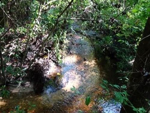 11 Acres 3 Lots Stream Springs : Palatka : Putnam County : Florida