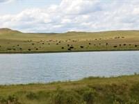 Antelope Springs Ranch : Cohagen : Garfield County : Montana