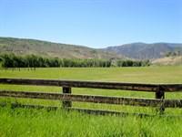 Gray Ranches : Montrose : Montrose County : Colorado