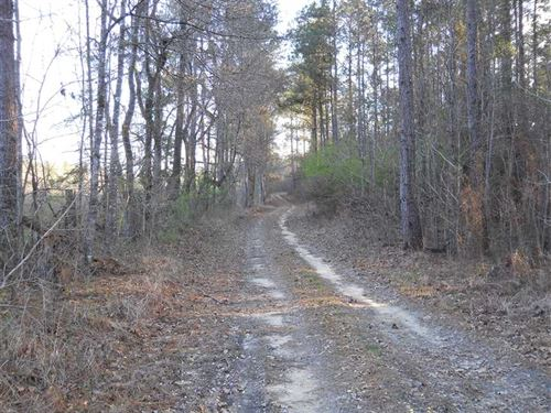 51.02 Acre Timberland & Recrea : Crosby : Amite County : Mississippi