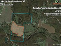 196 Acres Of Mixed Use-Hunting : Lincoln : Benton County : Missouri
