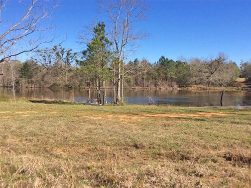 Aztec Road Tract : Greenville : Butler County : Alabama