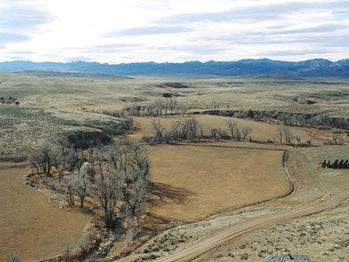 Y-Knot Ranch : Douglas : Converse County : Wyoming