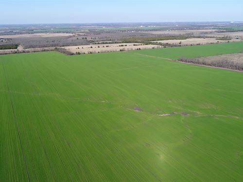 Large Row Crop Farm For Sale : Paris : Lamar County : Texas
