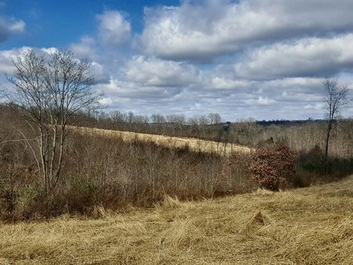 Rear Liberty Hill - 72 Acres : Chillicothe : Ross County : Ohio