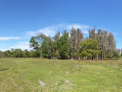 24 Acres Residential Homesites : Lakeland : Polk County : Florida