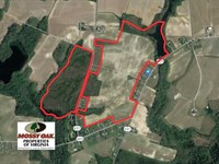 175 Acres of Prime Agricultural an : Ivor : Southampton County : Virginia