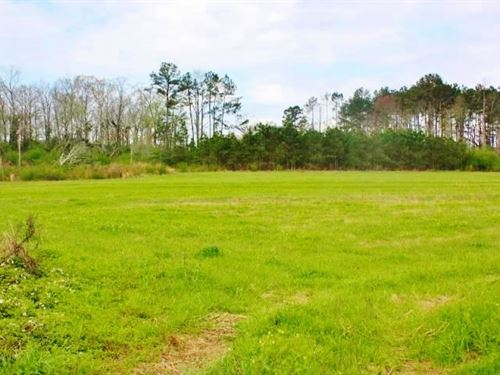 14 Acres Pasture For Sale Mize Scho : Magee : Smith County : Mississippi