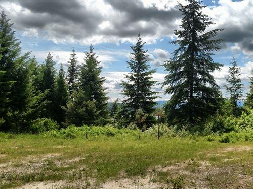 Robin's Perch : Newman Lake : Spokane County : Washington
