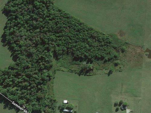 25.10 Acs, Barn, Spring, Mtn Views : Allons : Overton County : Tennessee