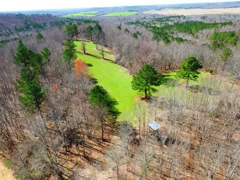 Secluded 292 Acres Freedom Hills : Cherokee : Colbert County : Alabama
