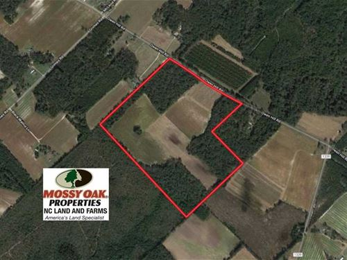 86 Acres of Farm And Timber Land : Elizabethtown : Bladen County : North Carolina