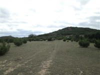 Land For Sale in Coryell County- 5 : Copperas Cove : Coryell County : Texas