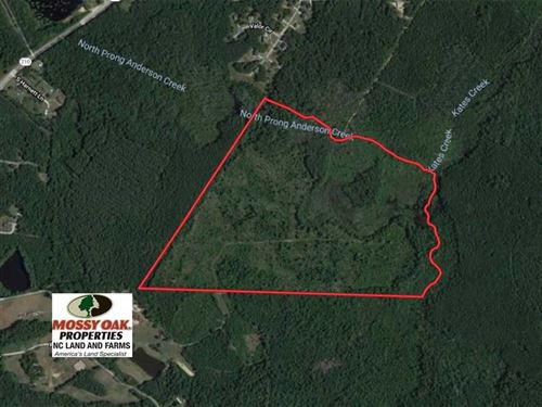 Reduced, 87 Acres of Hunting And : Bunnlevel : Harnett County : North Carolina