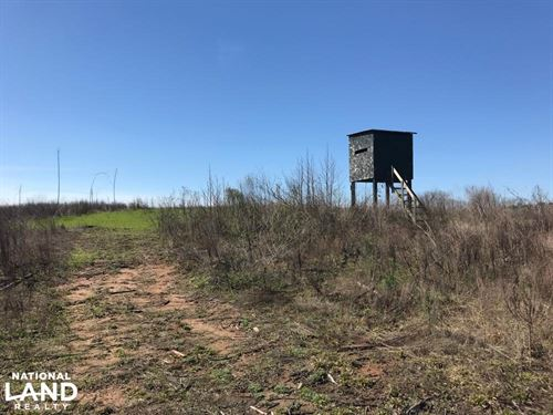 Brown Road Homesite, Hunting, And : Northport : Tuscaloosa County : Alabama