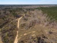272 Ac, Hunting With Home Site Pot : Harrisonburg : Catahoula Parish : Louisiana
