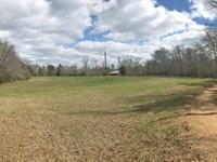 Coal Fire Creek Tract : Fayette : Fayette County : Alabama