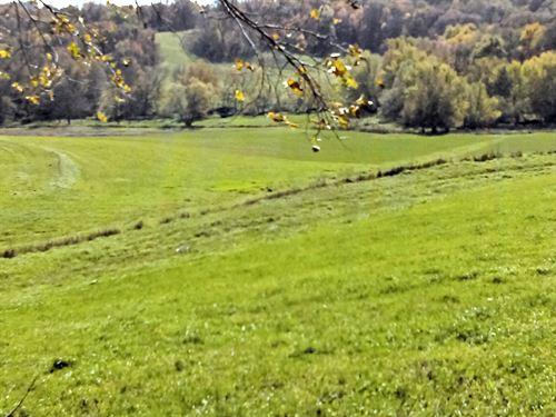 Woodland, Pasture & Cropland : Guthrie Center : Guthrie County : Iowa
