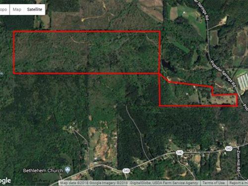 210 Acres of Elite Deer & Turk : Mendenhall : Simpson County : Mississippi