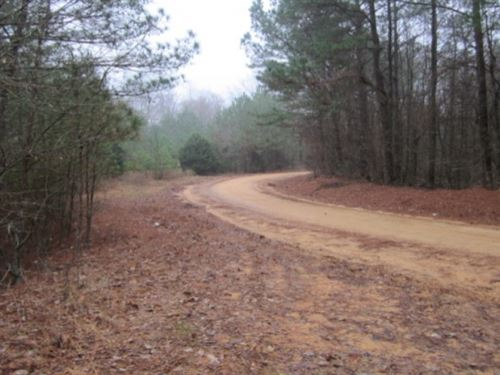 46 Acres In Chickasaw County In Hou : Houlka : Chickasaw County : Mississippi