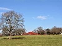 Hurricane Church Farm : Clinton : Laurens County : South Carolina