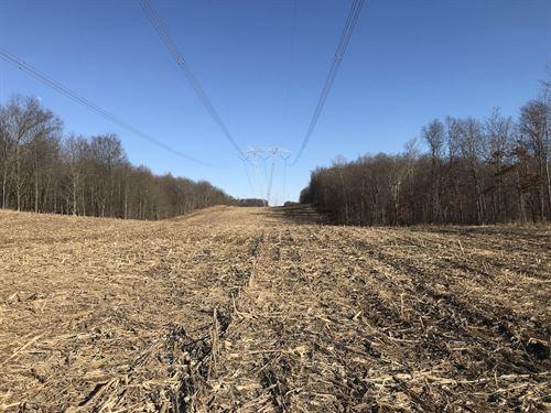 Floyd Boyer Rd - 65 Acres : Newark : Licking County : Ohio