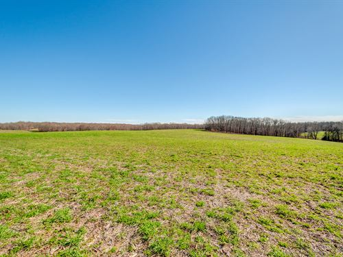 119 Acres Of True Farmland : Summertown : Giles County : Tennessee