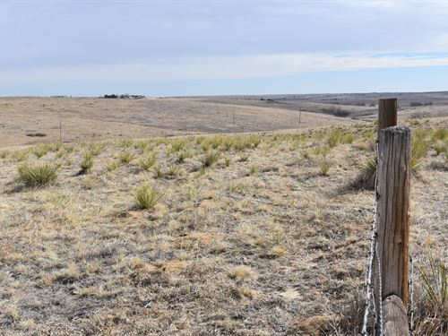 High Country Trail : Elizabeth : Elbert County : Colorado