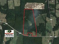 48 Acres of Timber And Pasture Lan : Siler City : Chatham County : North Carolina