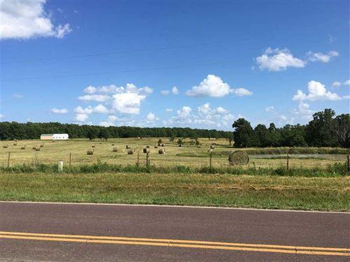 Texas County Hobby Farm : Licking : Texas County : Missouri