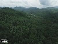 Homestead, Timber And Hunting Tract : Topton : Macon County : North Carolina