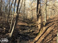 Cowpens Recreational Land With Beau : Cowpens : Spartanburg County : South Carolina