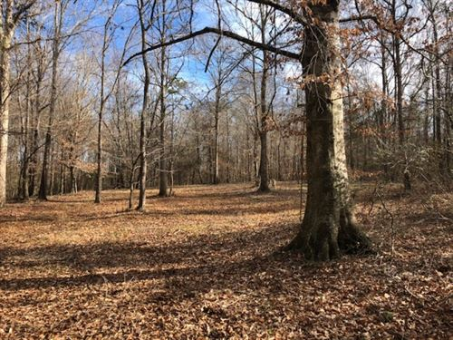49.77 Acres/ Tylertown, Ms/ Bethleh : Tylertown : Walthall County : Mississippi