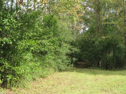 8.5 Acres Dogwood Trail : McComb : Pike County : Mississippi