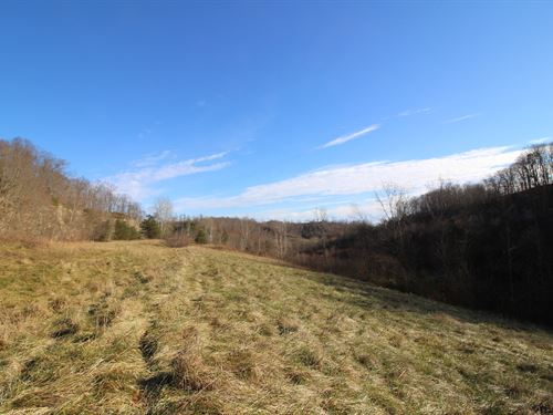 Jessie Creek Rd - 221 Acres : Bidwell : Gallia County : Ohio