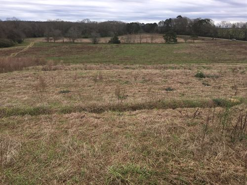 99 Acre Farm W/ 4 Poultry Houses : County Road 110 : Coffee County : Alabama