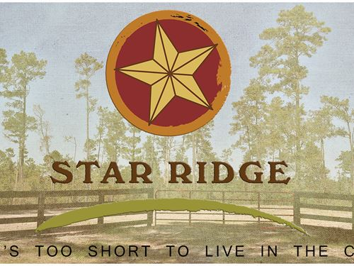 12 Ac Cm Hardy Lane-Star Ridge : Livingston : Polk County : Texas