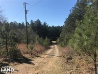 Watson Creek Hunting Tract : Vernon : Lamar County : Alabama