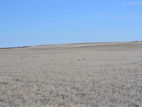 Whr Farms Crp Land For Sale : Kimball : Nebraska