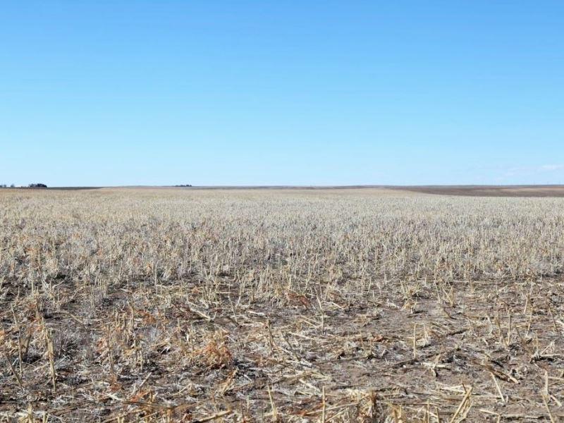 Se Deuel County Dryland : Chappell : Deuel County : Nebraska