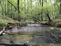 Versatile Acreage With Creek Views : Douglasville : Douglas County : Georgia
