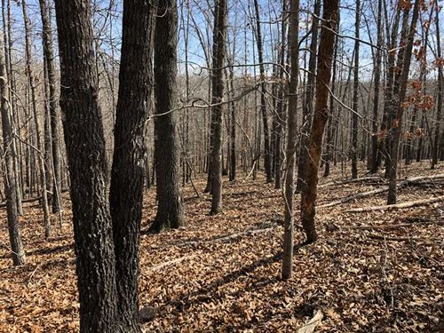 11 Acres Ideal For Residential : Highland : Sharp County : Arkansas