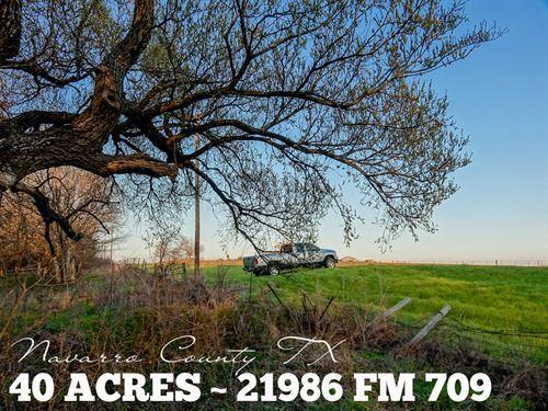 40 Acres In Navarro County : Hubbard : Navarro County : Texas